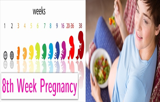 8 Weeks Pregnant How to Keep Your Baby Safe