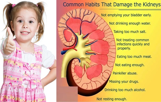 Protect your kidney by avoiding these habits