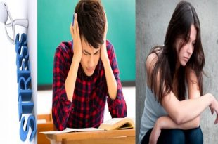 Traumatic Stress Changes Brain of Boys and Girls Differently
