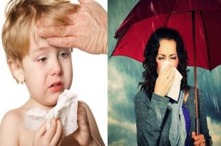 4 Cold Remedies That Actually Work