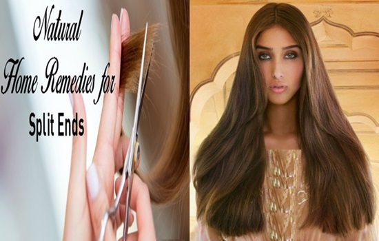 4 Home Remedies For Split Ends