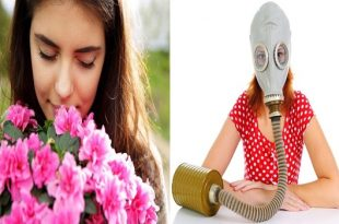 6 Worst Plants For Allergy Sufferers
