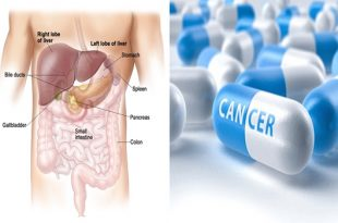 A discovery of the enzymes that causes failure in liver cancer drugs