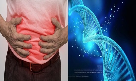 Epigenetic protein observed to be needed in Crohn's disease patients