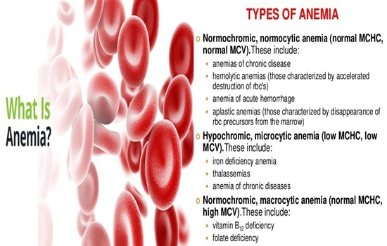 The 6 Most Common Types of Anemia