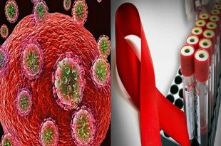 New HIV repository found