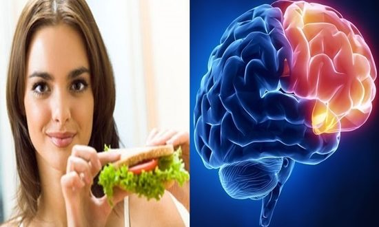New appetite control system found in brain