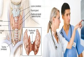 Supportive instrument enables doctors to all the more precisely foresee parathyroid cancer reappearance