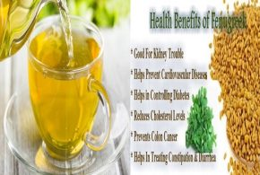Health Benefits Of Fenugreek Seeds