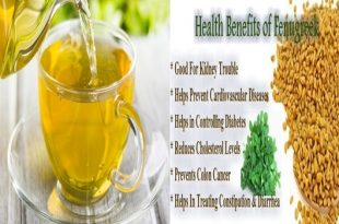 Health Benefits Of Fenugreek Seeds.