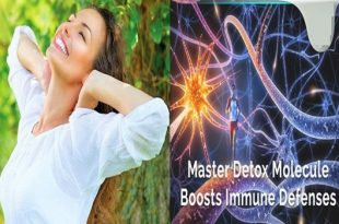 Immune defenses increased by master detox molecule