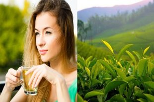5 Benefits of Green Tea That You Don't Know About