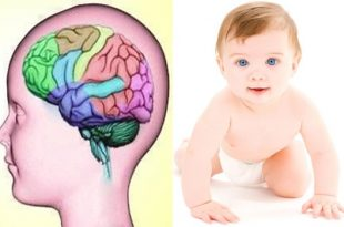 A new gene found to be the reason for seizures in babies