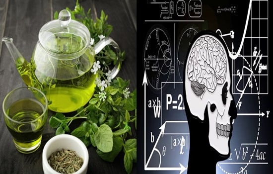 Green tea ingredient may enhance memory impedance, insulin resistance, and obesity