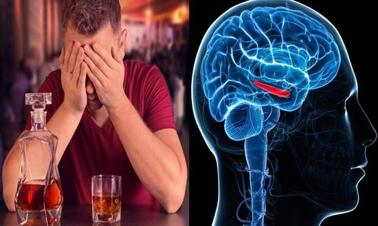 Heavy drinking at young age may cause dangerous consequences for the brain
