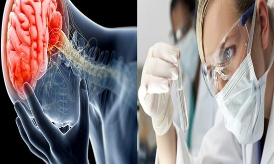 Scientists identify a new target for chronic pain
