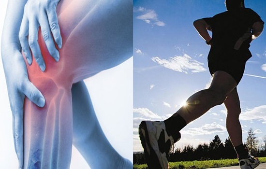 Self-viability supports physical action in osteoarthritis patients