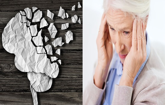 Specialists confirm that one of every three instances of dementia is preventable