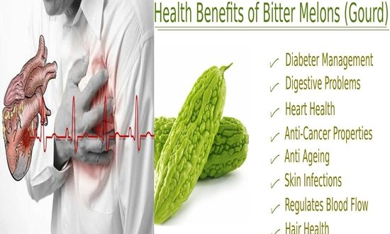 Benefits of the Bitter Gourd