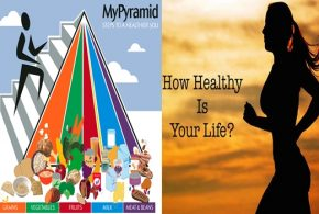 Important Information about Food Pyramid
