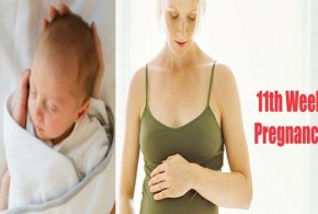 11 Weeks Pregnant: What to Expect and Do?