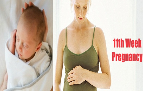 11 Weeks Pregnant What to Expect and Do