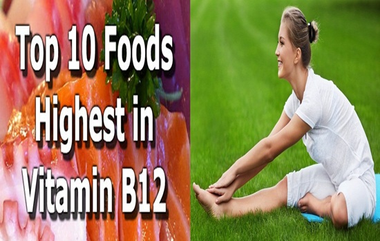 Top foods rich in Vitamin B12