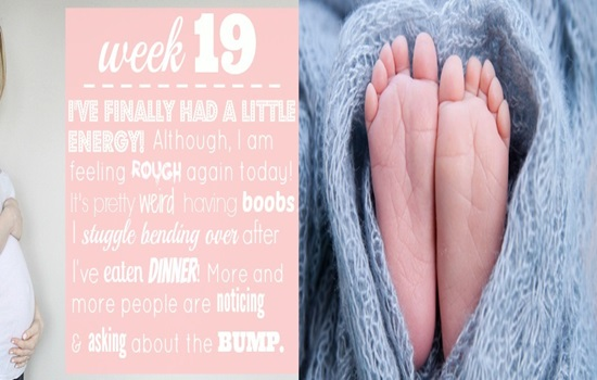 19 Week Pregnant Feelings and Developments You Have Never Experienced