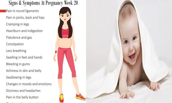 20 Weeks of Pregnancy What to Do in the Center Point of Your Pregnancy