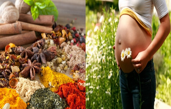 What herbal teas to avoid during pregnancy