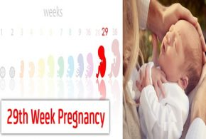 29 Weeks Pregnant: An Exciting Step toward Your Delivery