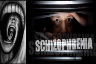 A simple guide to Paranoid Schizophrenia