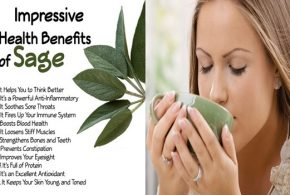 5 Amazing Health Benefits of Sage