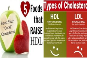 5 Foods To Increase Your Good Cholesterol