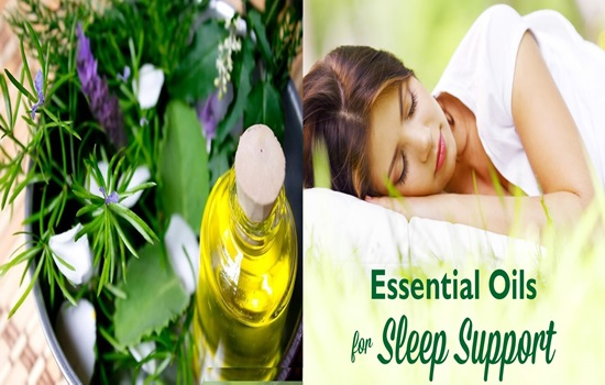5 Herbs That Help You Sleep