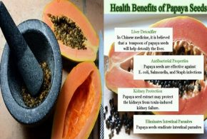 6 Amazing Health Benefits of Papaya Seeds