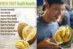 7 Reasons To Start Eating Durian Fruit
