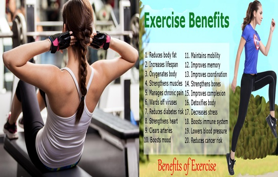 The Top 5 Benefits of Regular Exercise