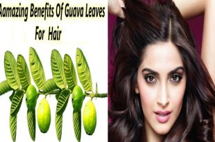 3 Stunning Ways To Use Guava Leaves for Your Hair