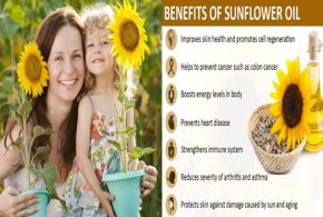6 Amazing Health Benefits of Sunflower Oil You Shouldn't Miss