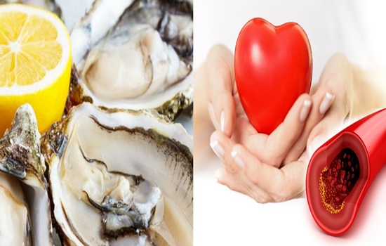 Research demonstrates a connection between zinc levels and cardiovascular wellbeing