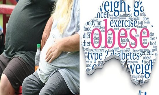 Study illustrates contrasts in cerebrum activity between men, ladies who are obese