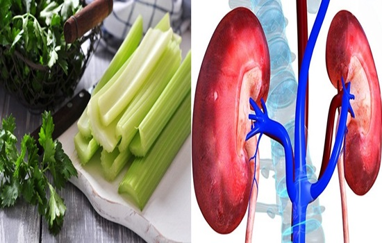 Herbs That Help Cleansing The Kidneys.