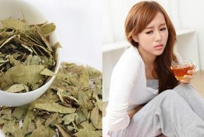 Side Effects and Precautions for Using Senna Tea as Laxative