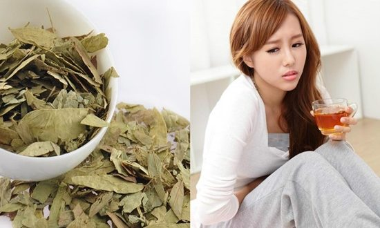 Side Effects and Precautions for Using Senna Tea as Laxative.