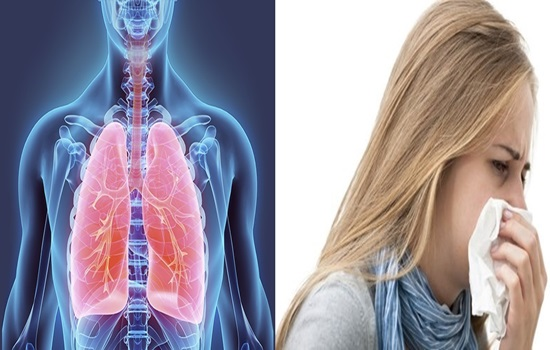 Respiratory infection new evidences identified