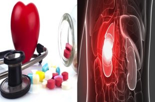 HBP medications could prompt kidney harm